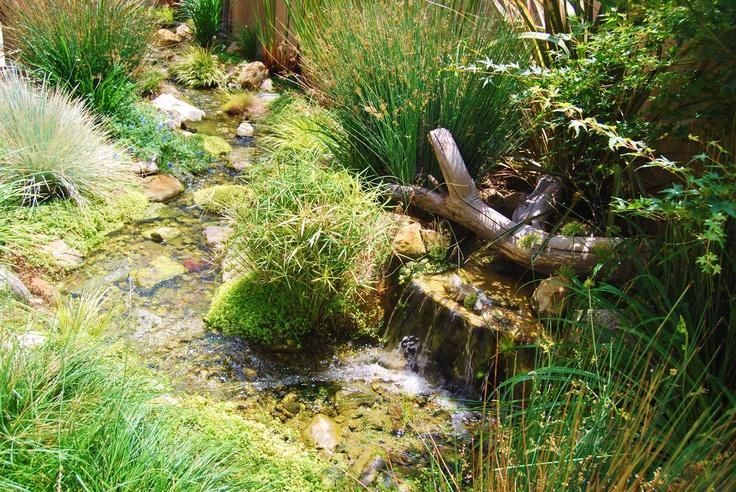 A Beautiful Backyard Pond And Water Garden
