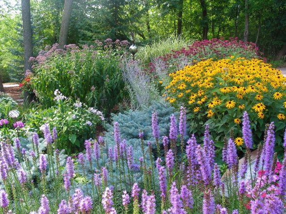 Nice plant combo: Liatris, black eyed susan, Joe Pye weed, Russian sage, white phlox, red bee balm, variegated grass
