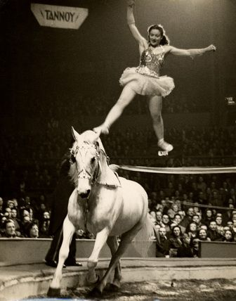 Circus horse rider. Fortunately Fern had only to stay attached to Missy.