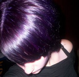 The 25 best dark purple highlights ideas on pinterest dark hair getting the urge to die my hair purple again what is with that i usually chicken out and choose rich burgundy breown instead when what i want is black pmusecretfo Gallery