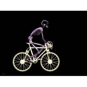 Skeleton Riding Bike Poster (Mass Market Paperback)  http://www.amazon.com/dp/0983497664/?tag=gatewaylapt0f-20  0983497664: Xray Images, Bicycles Xray, Bicycles Stuff, Bike Riding, Cycling Art, Bare Bones, Xray Skeletons, Riding Bike, X Ray