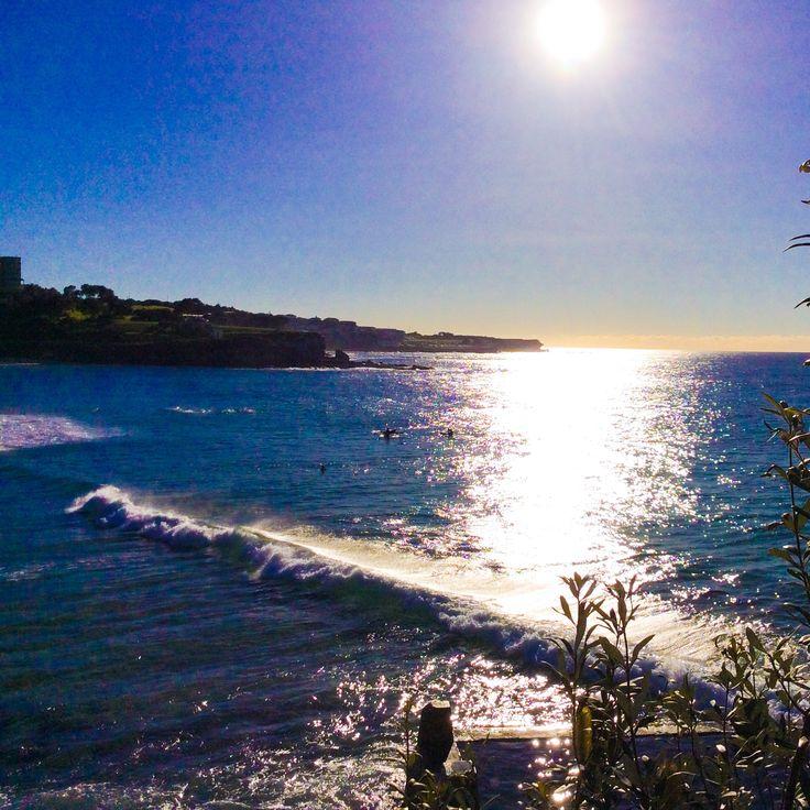 Sunshine. Coogee Beach.