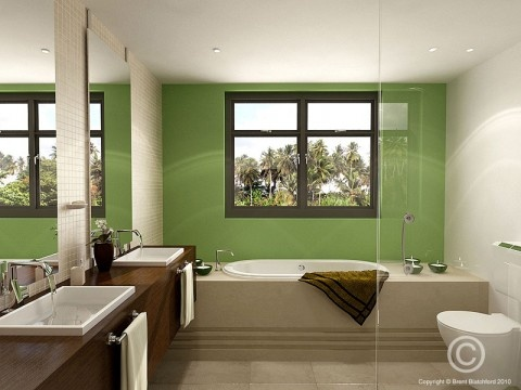 Minimalist Green Wall Bathroom Design With Simple Bath Tub Square Washbasin  And Mirror By Voodoo Butta