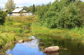 деревенский пейзаж природа - Поиск в Google