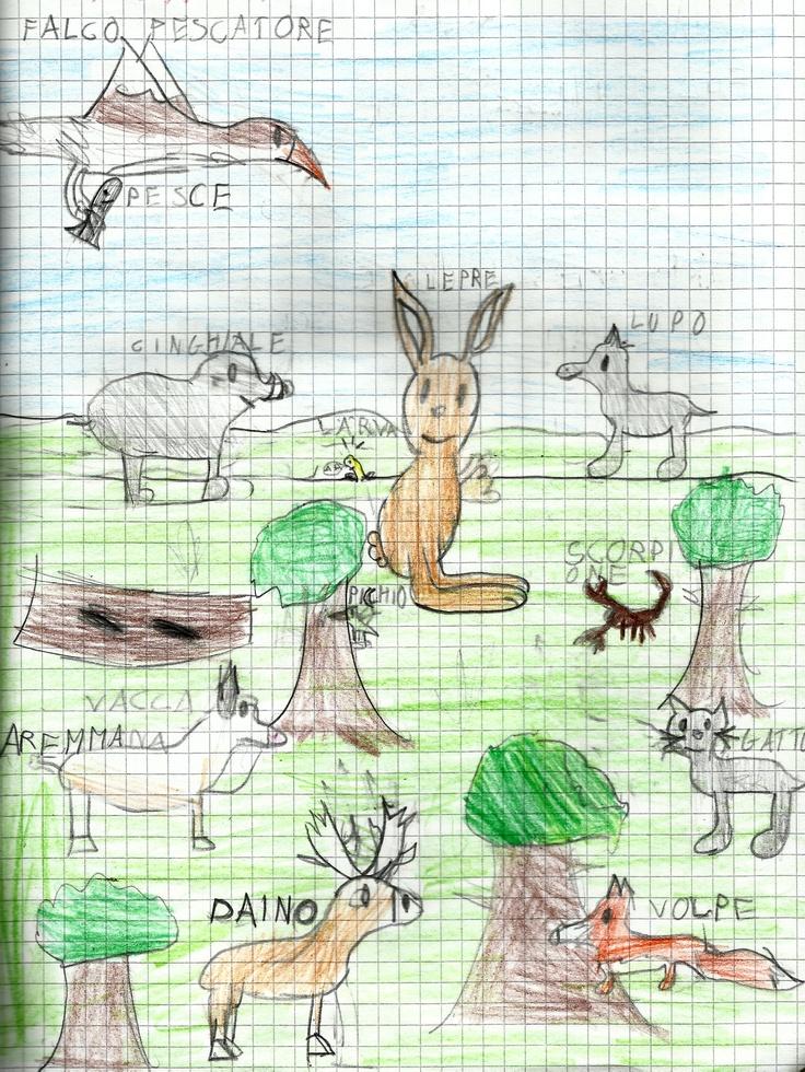 Didattica ambientale in classe seconda