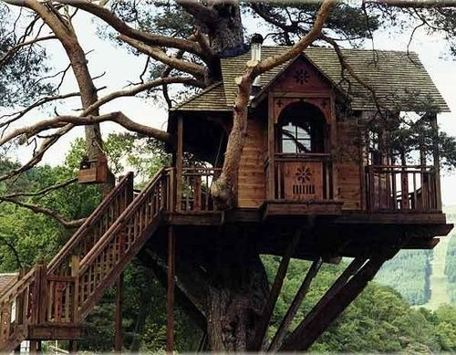 The Treehouse Lodge, Loch Goil, Scotland / The Green Life <3