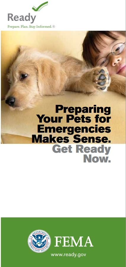 Keep your pet safe in the case that disaster strikes! MAKE A PLAN - let us help!  http://www.ready.gov/caring-animals
