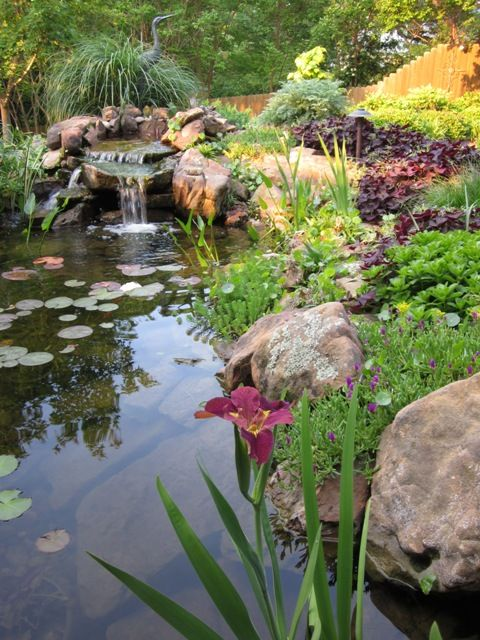 Lovely ~ Signature Gardens: Annuals/Containers - Spring/Summer