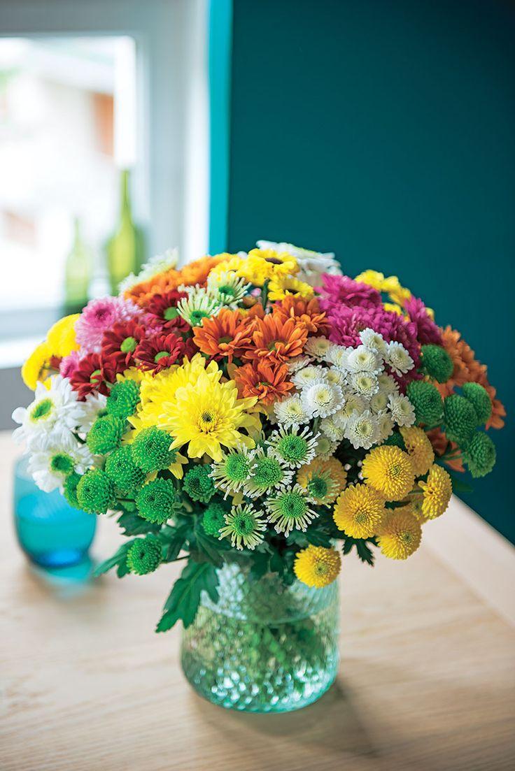 #Truffaut - Bouquet multicolore : foison de couleurs et de formes, un vrai feu d'artifice !