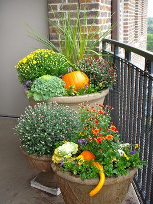 Love the use of pumpkins and gourds mixed in with a large fall planter. What visual interest!