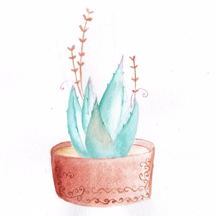 Watercolor Succulent #2 by mariaptore