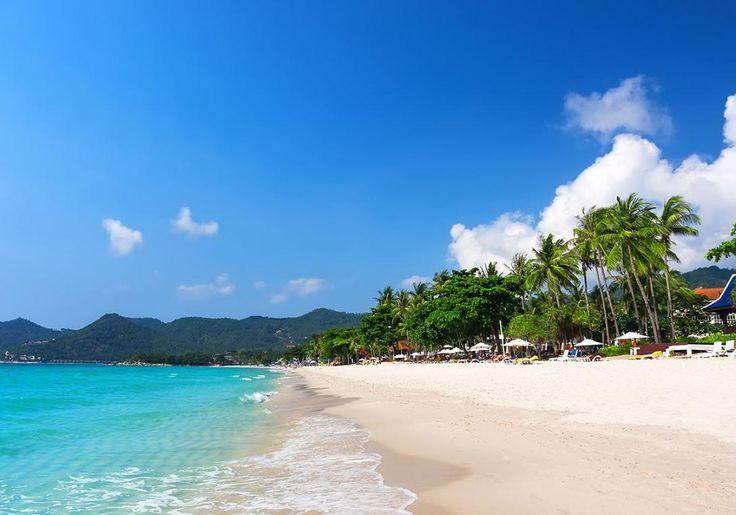 Koh Samui en skøn ø i Thailand, hvor der er masser af resorts, restauranter og stemning. Og selvfølgelig skønne strande og jungle!