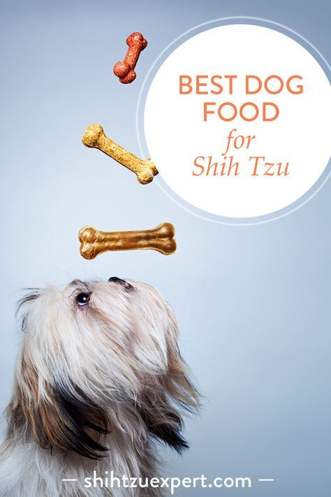 Best Dog Food Shih Tzu Sensitive Stomach
