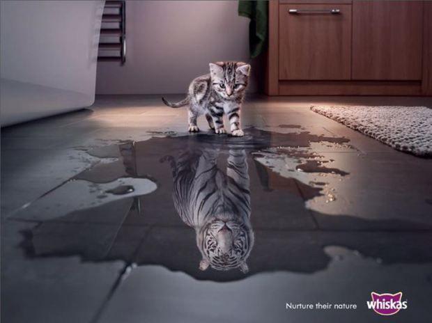 dans-ta-pub-publicité-compilation-créativité-affiche-print-10