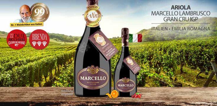 Ariola Marcello Lambrusco Gran Cru IGP ~ 99 Punkte von Luca Maroni - http://weinblog.belvini.de/ariola-marcello-lambrusco-gran-cru