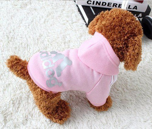 BUY Dog Cotton Clothes 50% OFF + FREE SHIPPING! Online dog clothes, dog clothes patterns, dog clothes female, dog clothes female sweaters, dog clothes female outfit, dog clothes female winter, clothes dog, clothes dog ideas, clothes dog christmas, clothes dog girl, cheap dog clothes, cheap dog clothes products, cheap dog clothes pet costumes