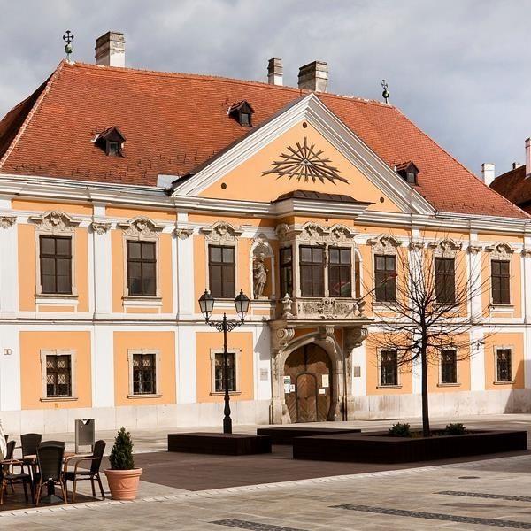 A középkori eredetű apró házak összeépítésével a XVIII. században épült impozáns Esterházy palotában működik a Rómer Flóris Művészeti és Történeti Múzeum. Gyűjtőköre országos, XX. századi és kortárs magyar képzőművészet, kortárs egyetemes grafika és a
