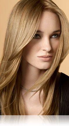 8N Sheer Blonde® Medium Natural Blonde - Precision foam permanent colour shades | John Frieda®