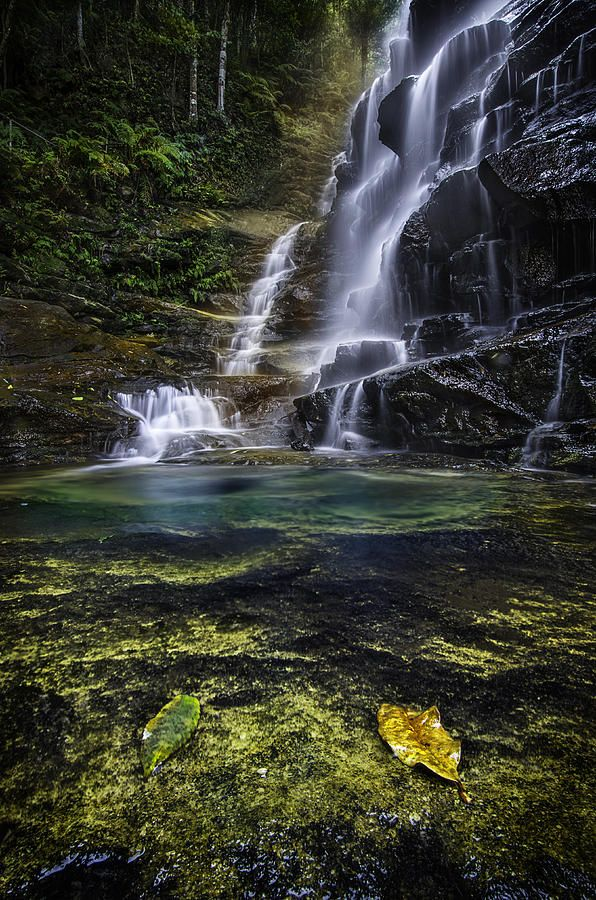 ✯ In The Valley Of The Waters - Sylvia Falls - Blue Mountains NSW Australia