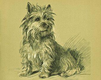 Antiques-Terrier chien années 1930 Lucy Dawson par BookStyles