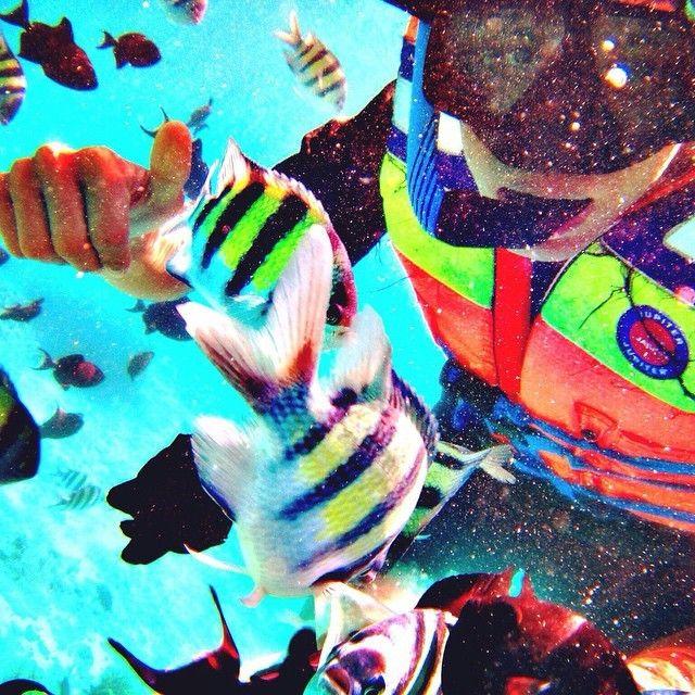 regram @el.nandez Weekend  #snorkling #beach #holiday #weekend #fish #blackfish #nemo #sabang #tengokaceh #visitaceh #mudamudiaceh #iloveaceh #aceh #indonesia #vscocam #vscoaceh #wonderfull #happy #fun #friend