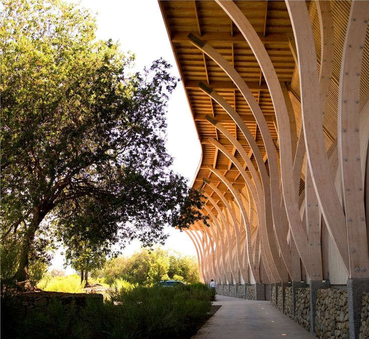 Gallery of Best Vineyards in Chile & Argentina (For Wine and Architecture) - 7