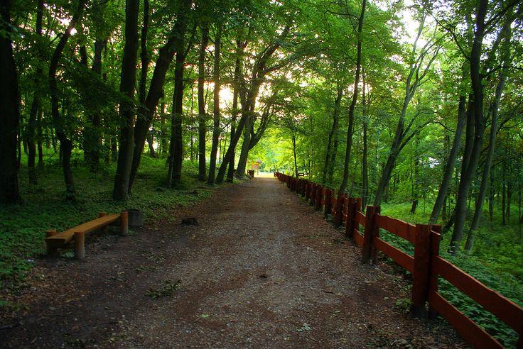 Ścieżka przy Jeziorze Szmaragdowym.