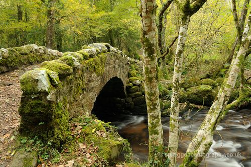 Medieval Hisley Bridge, Dartmoor, England photo by stephenspraggon