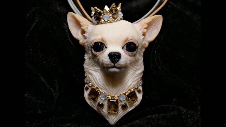 Royal Chihuahua