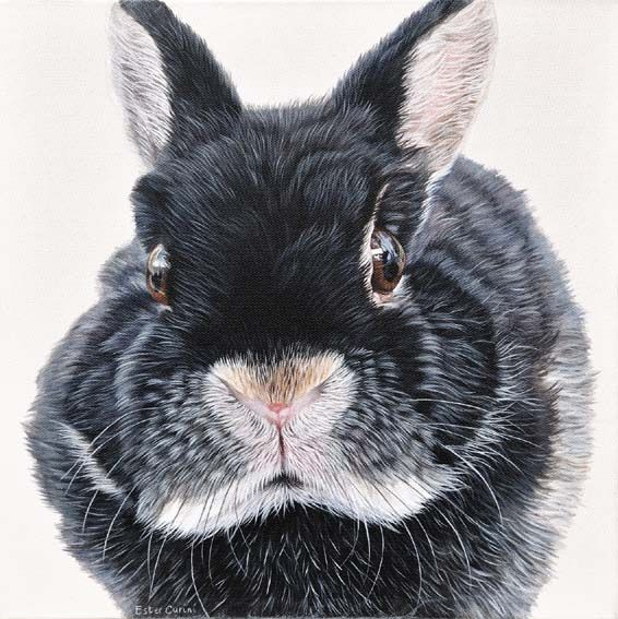 Fine Art and You: Ester Curini   Italian Animal Painter