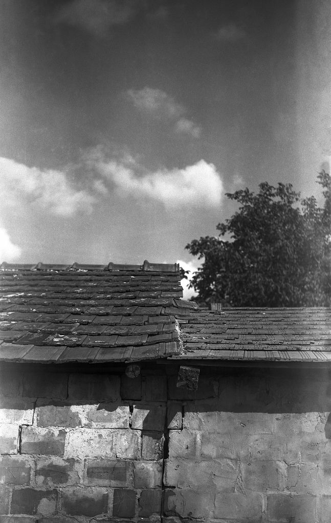 rooftops Voigtländer Bessa RF with 105 /3.5 Helomar  expired ORWO NP15 film shot at ISO 6 Developed with Ilford LC29 129 20deg 8min rooftops rustic rural film 6x9 mediumformat orwo np15 ilford lc29 expired analog buyfilmnotmegapixels filmisnotdead rangefinder vintage camera