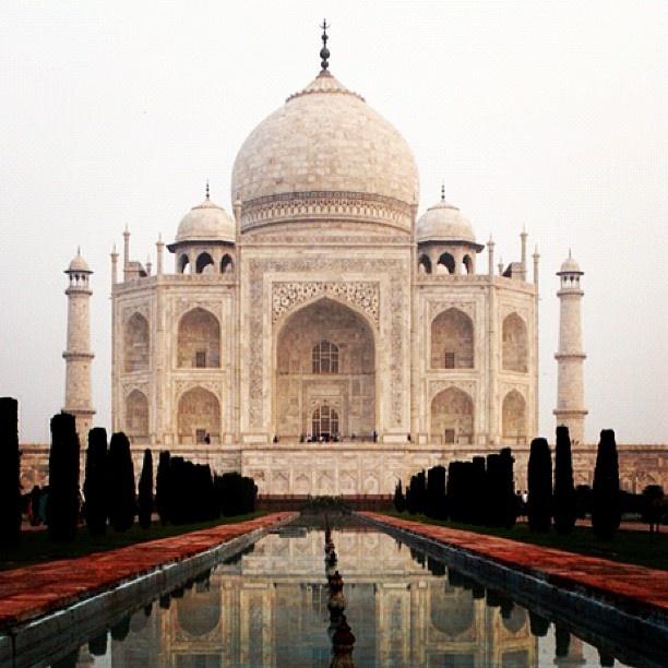 Taj Mahal #india #agra #monument #mughal #emporer #shahjahan #anarkali