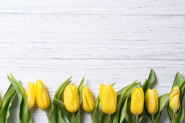 25+ Unique Easter Background Ideas On Pinterest