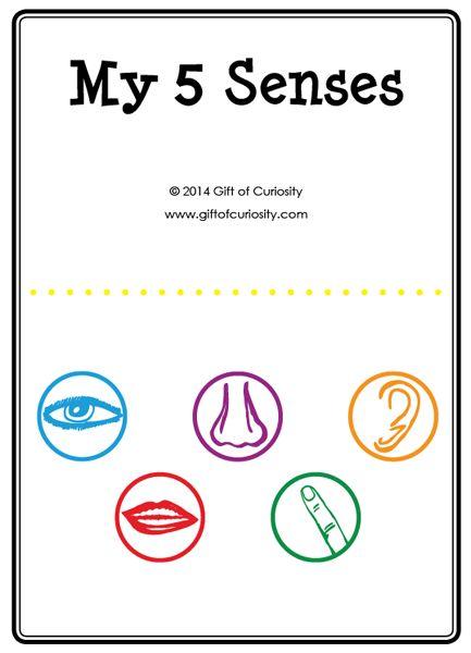 five senses activities a printable my 5 senses activity book plus a link to a