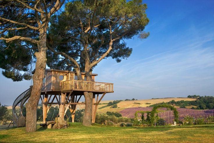 Una delle più grandi case sull'albero del mondo.