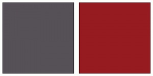 grey and cranberry! Wedding color swatches!