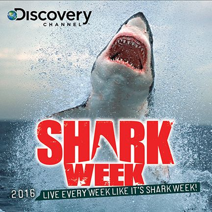 "Shark Week 2016 Product Lineup Includes ""Shark Week at Sea"" - http://www.goldenstatehaunts.org/2016/06/14/shark-week-2016-product-lineup-includes-shark-week-at-sea/"