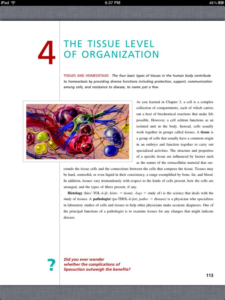 41 best Chapter 4, The Tissue Level of Organization images on ...