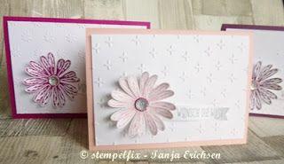 Stempelfix Glückwunschkarten mit Gänseblümchengruß, Stampin Up