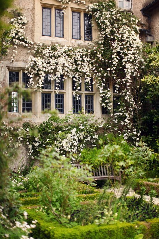 1000  images about garden passions on pinterest