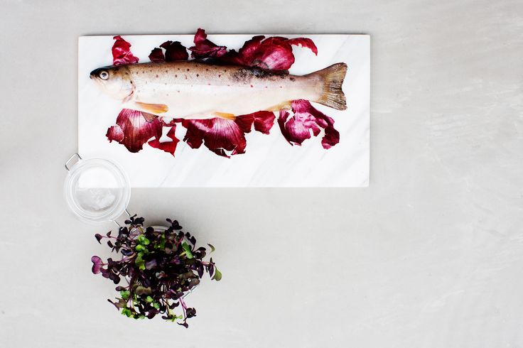 Freshly caught trout. | Nordic Choice #localeataward