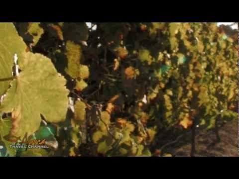 Rietvallei Wines Robertson Wine Valley #SouthAfrica