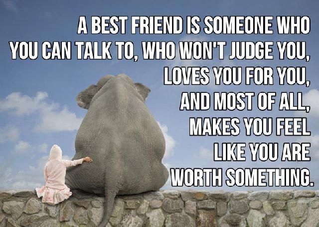 274 Best Images About Friendship Qoutes On Pinterest: 25+ Best Ideas About Funny Friendship Pictures On