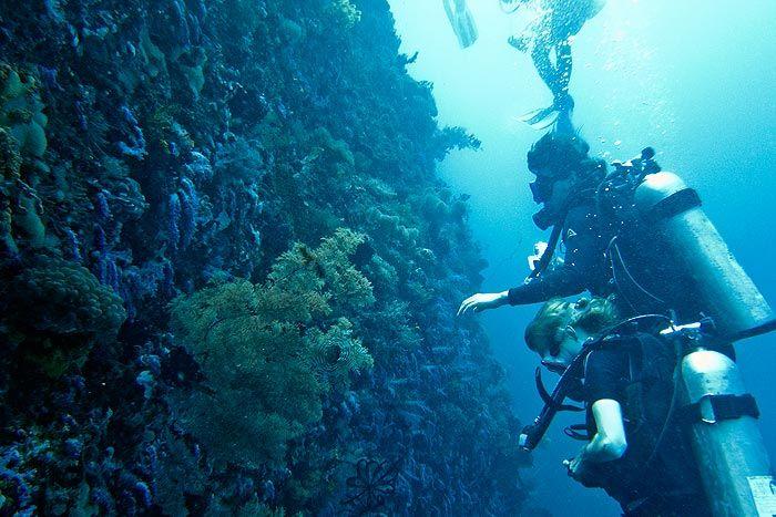 Phuketin parhaat sukellukset  Phuketista voi tehdä sekä päiväsukelluksia lähikohteisiin että liveaboard-sukellussafareita Thaimaan parhaille sukelluspaikoille. Sukeltaa voi ympäri vuoden.