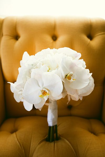 crisp + clean white orchid bouquet | Pure 7 Studio #wedding