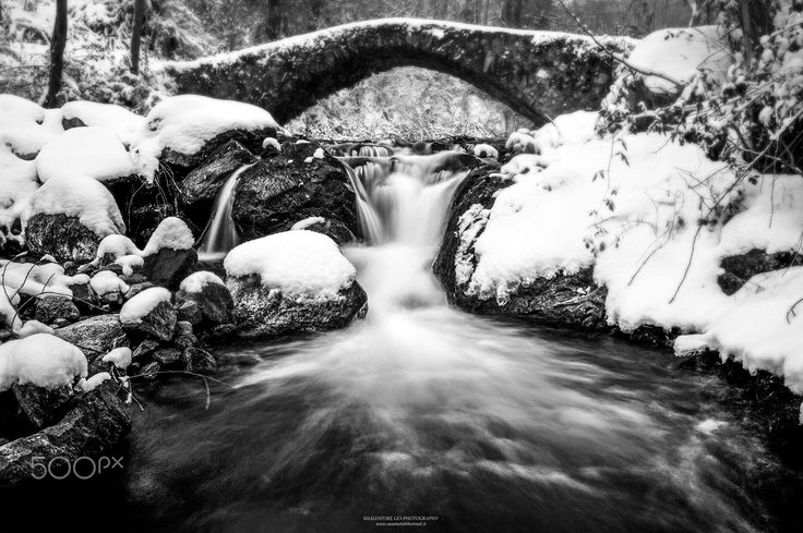 Abandoned Place! - The old bridge in the forest!  Italy  © Salvatore Lio