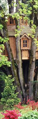 We build treehouse dreams every day. Construimos sueños treehouse todos los días. From the simplest backyard treehouses for children to the most amazing private treehomes for adults, we can design and build the perfect treehouse for you. Desde las casas del árbol del patio trasero para los niños más simples a las más sorprendentes treehomes privadas para adultos, podemos diseñar y construir la casa del árbol perfecto para usted. Let us show you all the ways you can be in a tree . Vamos a…