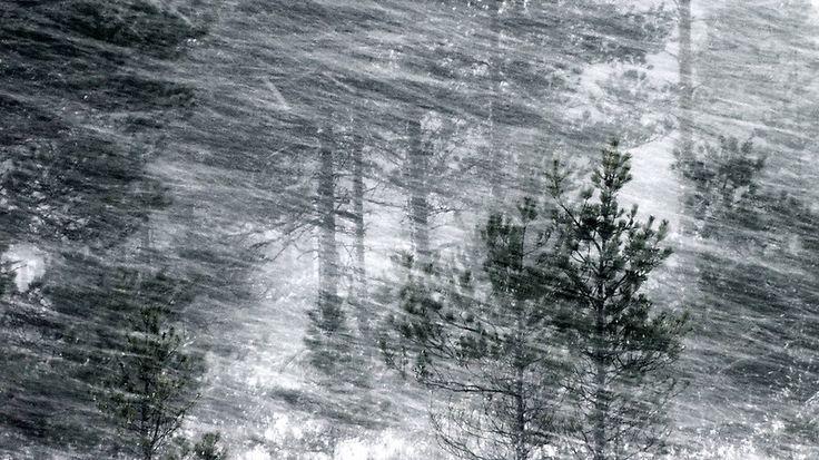 Kuvahaun tulos haulle blizzard finland
