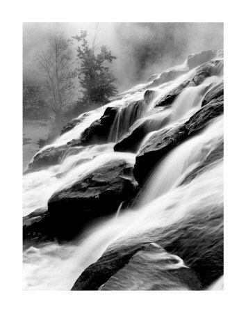 Paysages naturels (photographies noir et blanc) Poster sur AllPosters.fr