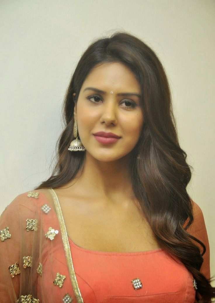 celebstills: Sonam Bajwa At Tamil Film 'Kappal' Success Meet In Channai